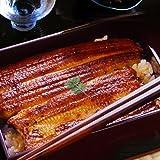 浜名湖山吹 国産うなぎ真空長蒲白焼きと生姜風味佃煮セット