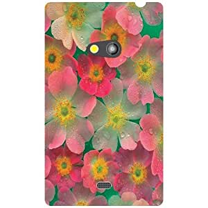 Nokia Lumia 625 Back cover (Printland)