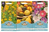 Mr Fothergill's Seeds Climbing Exotic Flowers Collection