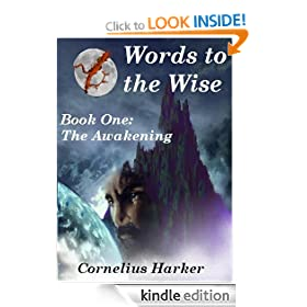 Words to the Wise: A Gothic Saga. Book One (The Awakening)