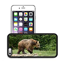 buy Luxlady Premium Apple Iphone 6 Plus Iphone 6S Plus Aluminum Backplate Bumper Snap Case Image Id 21567427 Wet Brown Bear Walking After Taking A Bath