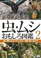虫・ムシ おもしろ図鑑 2 森に隠れるカマキリたち~世界 輝く虫たち [DVD]