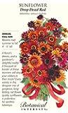 Drop Dead Red Sunflower Seeds - 4 grams