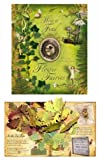 img - for How to Find Flower Fairies book / textbook / text book