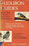 img - for Audubon Guides: All the Birds of Eastern and Central North America book / textbook / text book