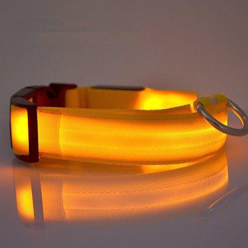 vangold-nylon-pet-dog-collar-night-safety-led-light-up-flashing-glow-in-the-dark-lighted-circular-pe