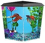 KollerCraft Aquarius Aquarium Kit, 1-Gallon