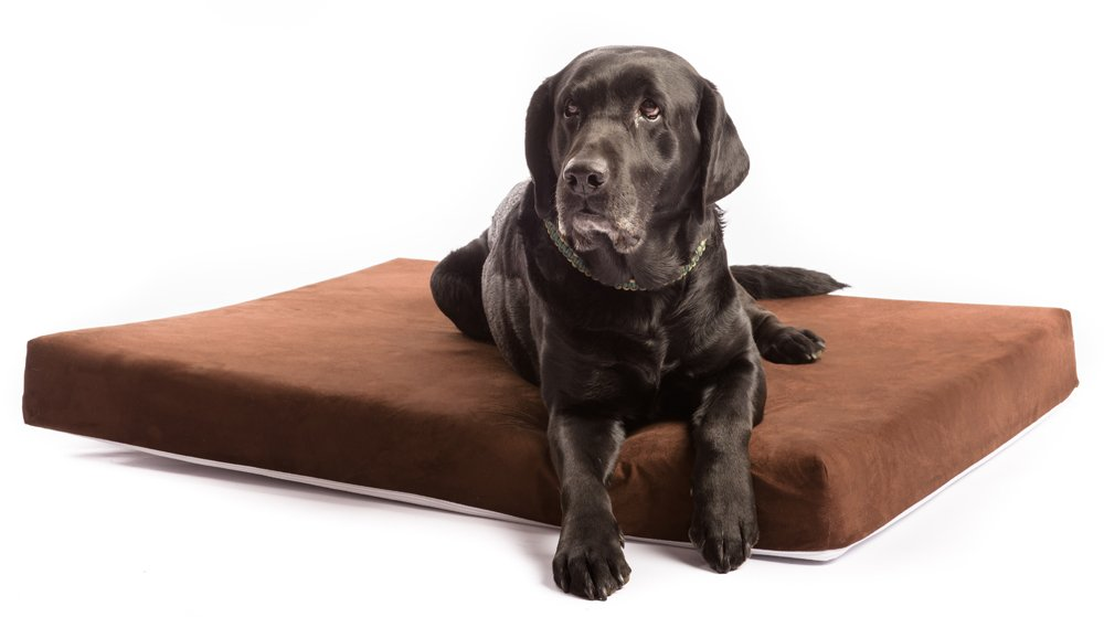 The Smokey Dog Co. Best Therapeutic Dog Bed for Big Breed Dogs. Waterproof Lining & Removable Cover