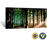 Creative Art- Modern Canvas Painting Wall Art the Picture for Home Decoration Autumn Fall Scene Foggy Forest in Sunny Rays Landscape Forest Print on Canvas Giclee Artwork for Wall Decor