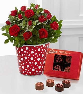 FTD Flowers Lovely Treasures Valentine Mini Rose
