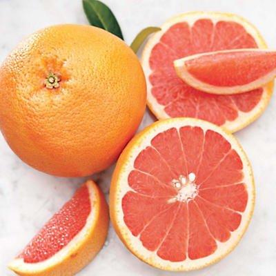 Organic Grapefruit - Harry and David
