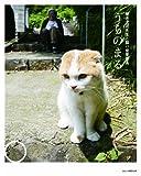 うちのまる ~養老孟司先生と猫の営業部