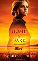 Home by Dark