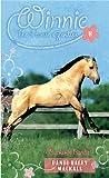 Buckskin Bandit: 8 (Winnie the Horse Gentler)