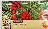 Homebase Salad Collection Multi-Pack seeds , 10 varieties , each separately packed - Basil , Beetroot , Cress, Lettuce , Lettuce Salad Bowl , Onion (Spring) , Pepper (Sweet) Radish , Rocket , Tomato Gardeners Delight