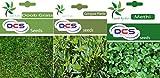 DCS Doob Grass,Gongura & Methi Seeds (3Per Pack 1 gram Each)