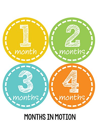 Months in Motion 173 Monthly Baby Stickers Milestone Newborn Girl or Boy Orange