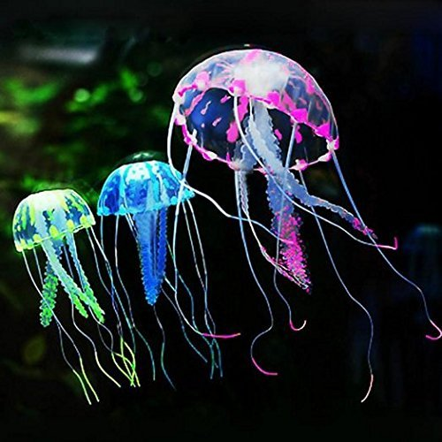 leuchtende-qualle-cilk-3-qualle-fur-aquarium-fisch-tank-glowing-medium
