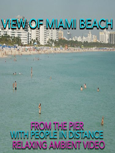 View of Miami Beach from the pier with people in distance relaxing ambient video