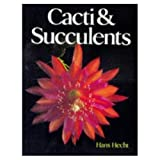 img - for Cacti & Succulents book / textbook / text book