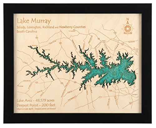 Lake Tahoe in Placer El Dorado Washoe NV Douglas NV Carson City NV, CA NV - 2D Map (Black Frame/No Glass Front) 11 x 14 IN - Laser carved wood nautical chart and topographic depth map. (Lake Tahoe Wood Chart compare prices)