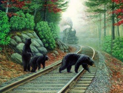 Cheap SunsOut Bear Tracks 500pc Jigsaw Puzzle by Dan Christ (B002T3ZIXK)