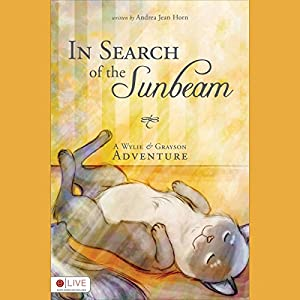 In Search of the Sunbeam Audiobook