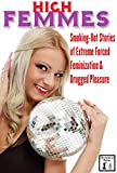 img - for High Femmes: Smoking-Hot Stories of Extreme Forced Feminization and Drugged Pleasure book / textbook / text book