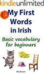 My First Words in Irish: Basic vocabu...