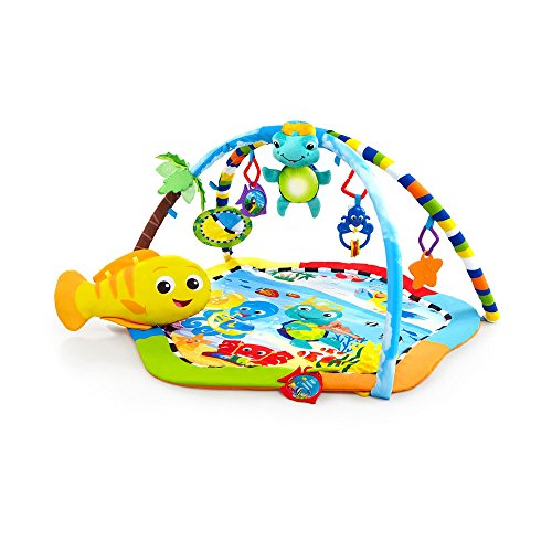 baby einstein meet the orchestra toys