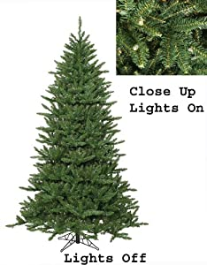 12' Pre-Lit Frasier Fir Artificial Christmas Tree & Rolling Stand - Clear Lights