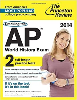 princeton review major essy typer