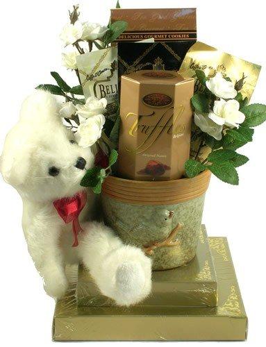 Send Baby Gift Basket