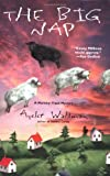 The Big Nap (Mommy-Track Mystery) (0425179494) by Waldman, Ayelet