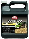 Ortho 0430610 GroundClear Vegetation Killer Concentrate, 2-Gallon