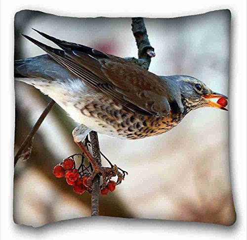 Custom Cotton & Polyester Soft ( Animals bird blackbirds branch rowan food wood ) Pillow Covers Bedding Accessories Size 16