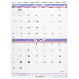 AT-A-GLANCE Wall Calendar 2016, Two Month View, 22 x 29 Inches (PM928)
