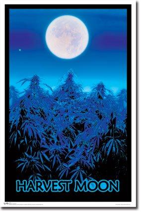 Harvest Moon black light poster