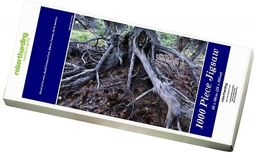 photo-jigsaw-puzzle-of-detail-of-tree-roots-banff-national-park-alberta-canada-north-america