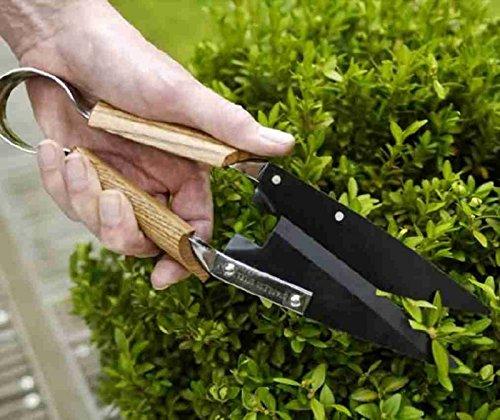 scatola-albero-e-arbusti-forbici