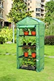 4 Tier High Quality Portable Greenhouse W/shelves, Mini Green House New