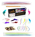 SHANY Cosmetics Feather Hair Extension Kit, 8 Ounce (Feather Hair, Hook, Beads, Feather Grizzly Solid Mix All-In-One) -100 Piece