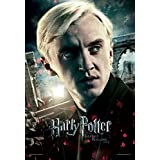 Warner Bros 'Harry Potter And The Deathly Hallows Part 2 -Draco Face' Poster - (30.48 Cm X 45.72 Cm)
