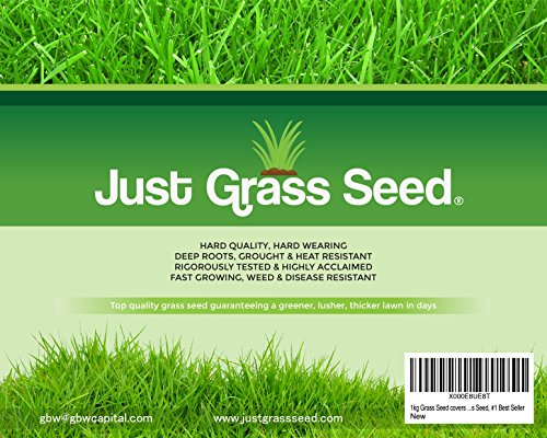 1-kg-grass-seed-covers-35-sqm-premium-quality-seed-fast-growing-and-hard-wearing-lawn-seed-43-ryegra
