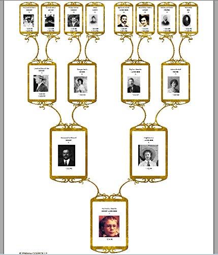 Stammbaum 7 0 software for Stammbaum zum ausdrucken