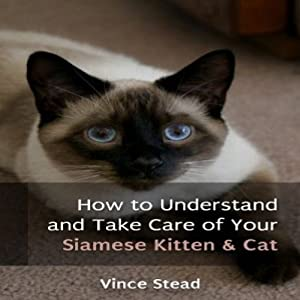 How to Understand and Take Care of Your Siamese Kitten & Cat | [Vince Stead]
