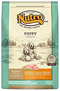 The Nutro Company Wholesome Essentials Puppy Food with Chicken, Whole Brown Rice and Oatmeal Formula, 30-Pound