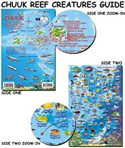 Chuuk Lagoon Reef Creatures Fish ID for Scuba Divers and Snorkelers