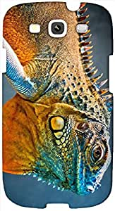 Timpax protective Armor Hard Bumper Back Case Cover. Multicolor printed on 3 Dimensional case with latest & finest graphic design art. Compatible with Samsung S3 - I9300 Galaxy S III Design No : TDZ-24354