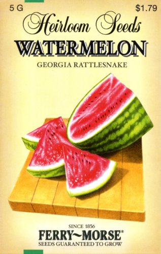 Ferry-Morse 3768 Heirloom Seeds Watermelon - Georgia Rattlesnake